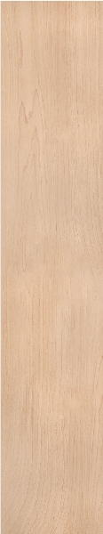 Venice Canadian Maple Bedroom Doors
